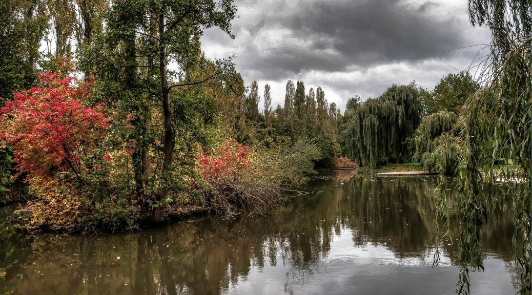 pond-261170_1920